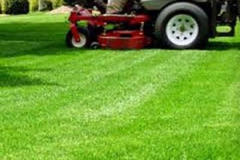 Lawn-Care-Mowing-1