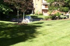 Lawn-Care-Mowing-3